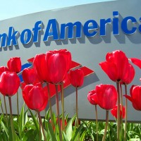 Even a Profitable BofA Shows Banking's Risks