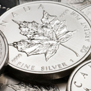 SilverCoins185 5 Alternative Investments    for the Few
