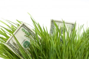 money growth grass 630 ISP