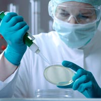 biotech stocks Clovis Oncology (CLVS) Knocked Out By FDA Inquiry