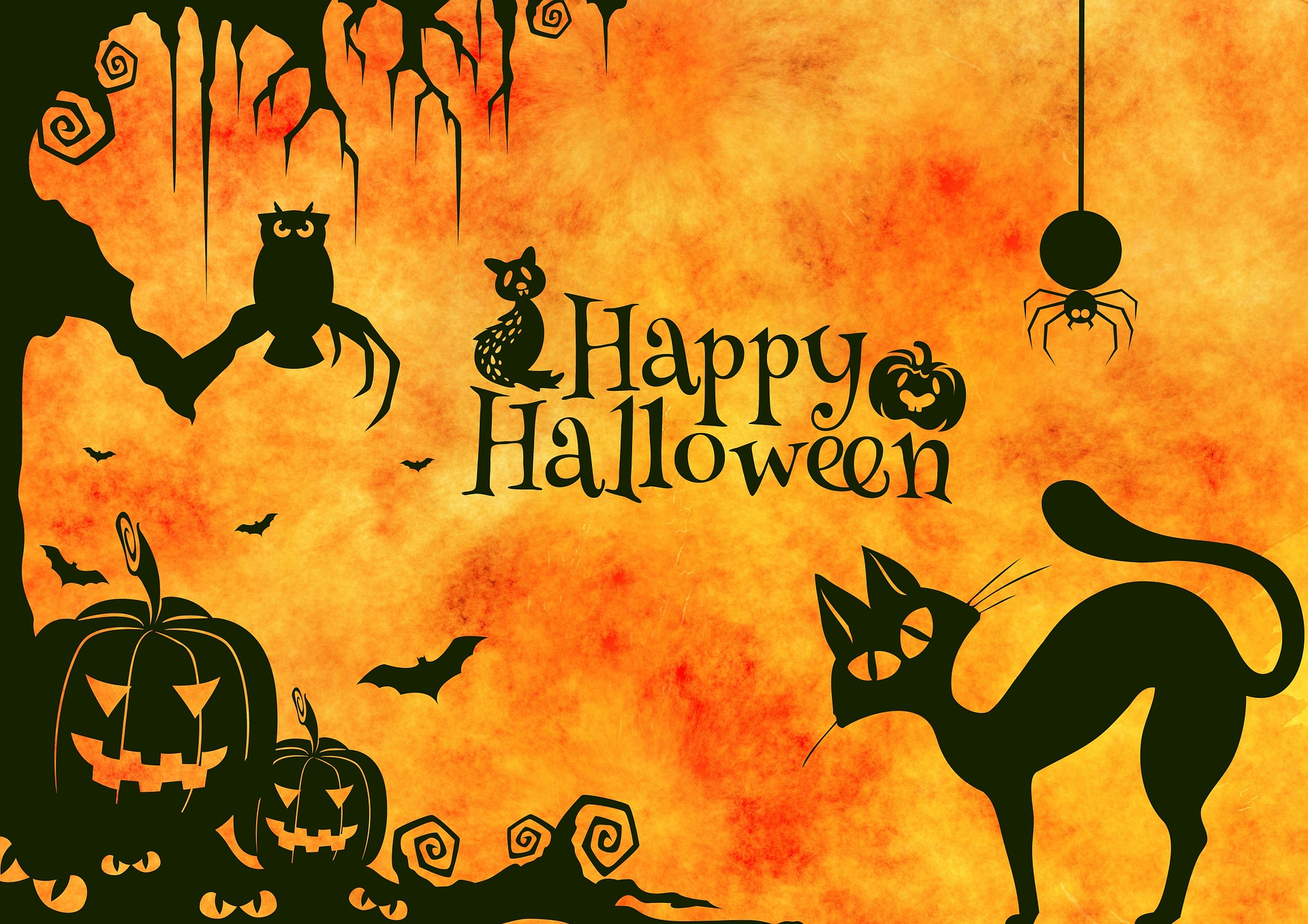 happy halloween quotes 2015 | investorplace