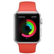 holiday gift guide, Apple Watch