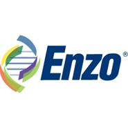 enz-stock-logo
