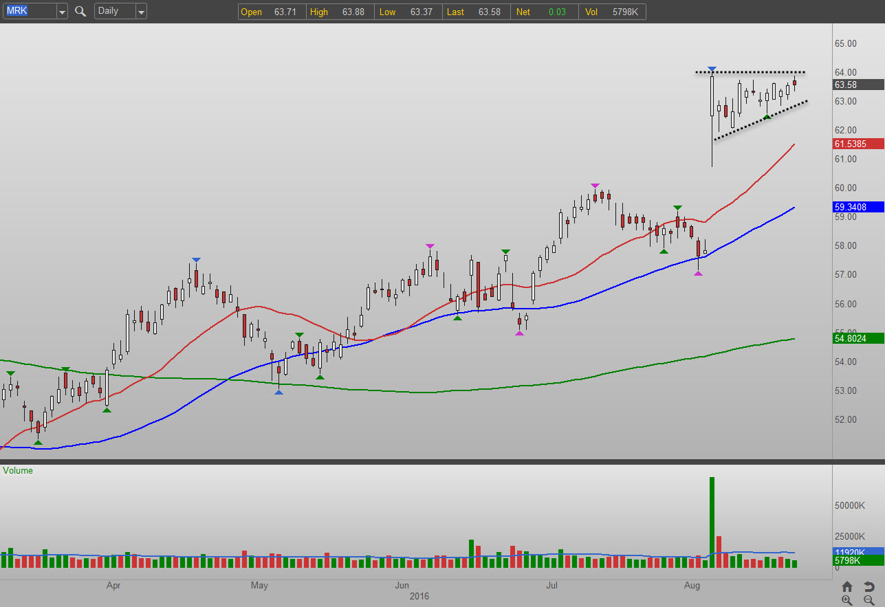 Stock options merck