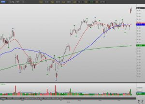 Msft stock options