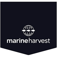 Consumer Stocks to Buy: Marine Harvest (MHG)