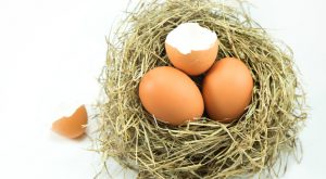 7 Utility Stocks That Will Crack Your Nest Egg