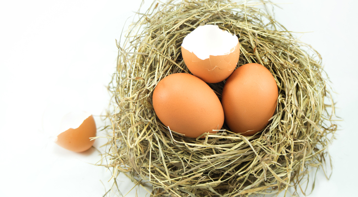 utility stocks - 7 Utility Stocks That Will Crack Your Nest Egg