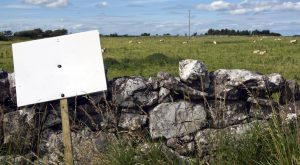 Investments to Hold in an IRA: Land Held for Speculation