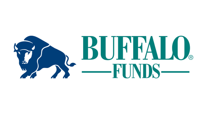 Actively Managed Mutual Funds to Buy: Buffalo Dividend Focus Fund (BUFDX)