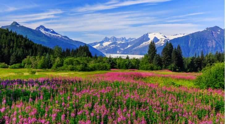 420 Friendly Hotels in Alaska