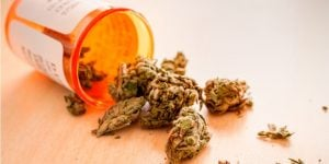3 Medical Marijuana Stocks to Buy