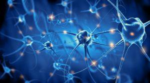 Minerva Neurosciences News