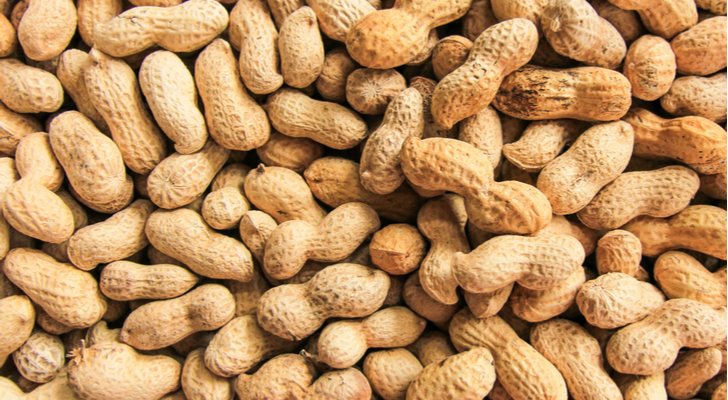 peanut allergy cure for adults