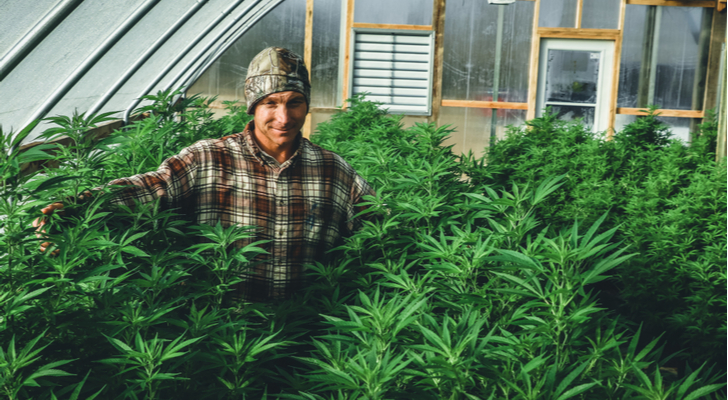 The Correction In Cronos Stock Is Warranted Despite Cannabis Boom