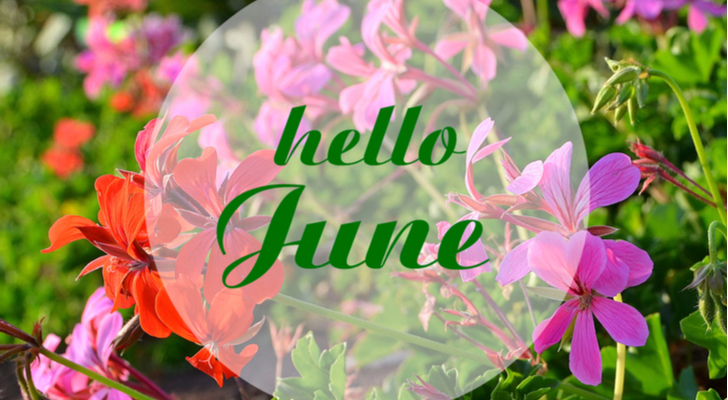 10 Hello June Images to Post on Facebook, Twitter and Instagram