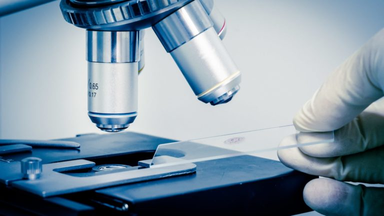 Biotech stocks - 7 A-Rated Biotech Stocks to Buy Now