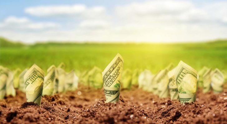 Image of money growing out of dirt in a field on a sunny day, represents growth stocks