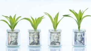 Jars of money with green growth sprouts.