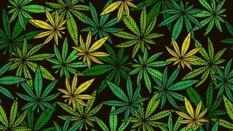 marijuana stocks - 7 Marijuana Stocks Ready To Surge Again