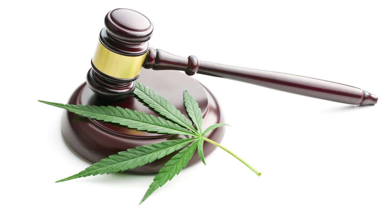 4 Top Marijuana Penny Stocks to Take Seriously in 2019