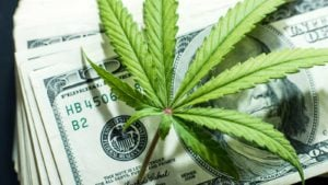 image of marijuana leaf on top of several one-hundred dollar bills