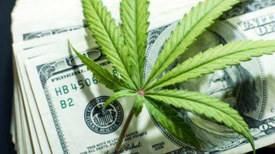 4 Marijuana Stocks to Buy for the Big 2020 Rebound