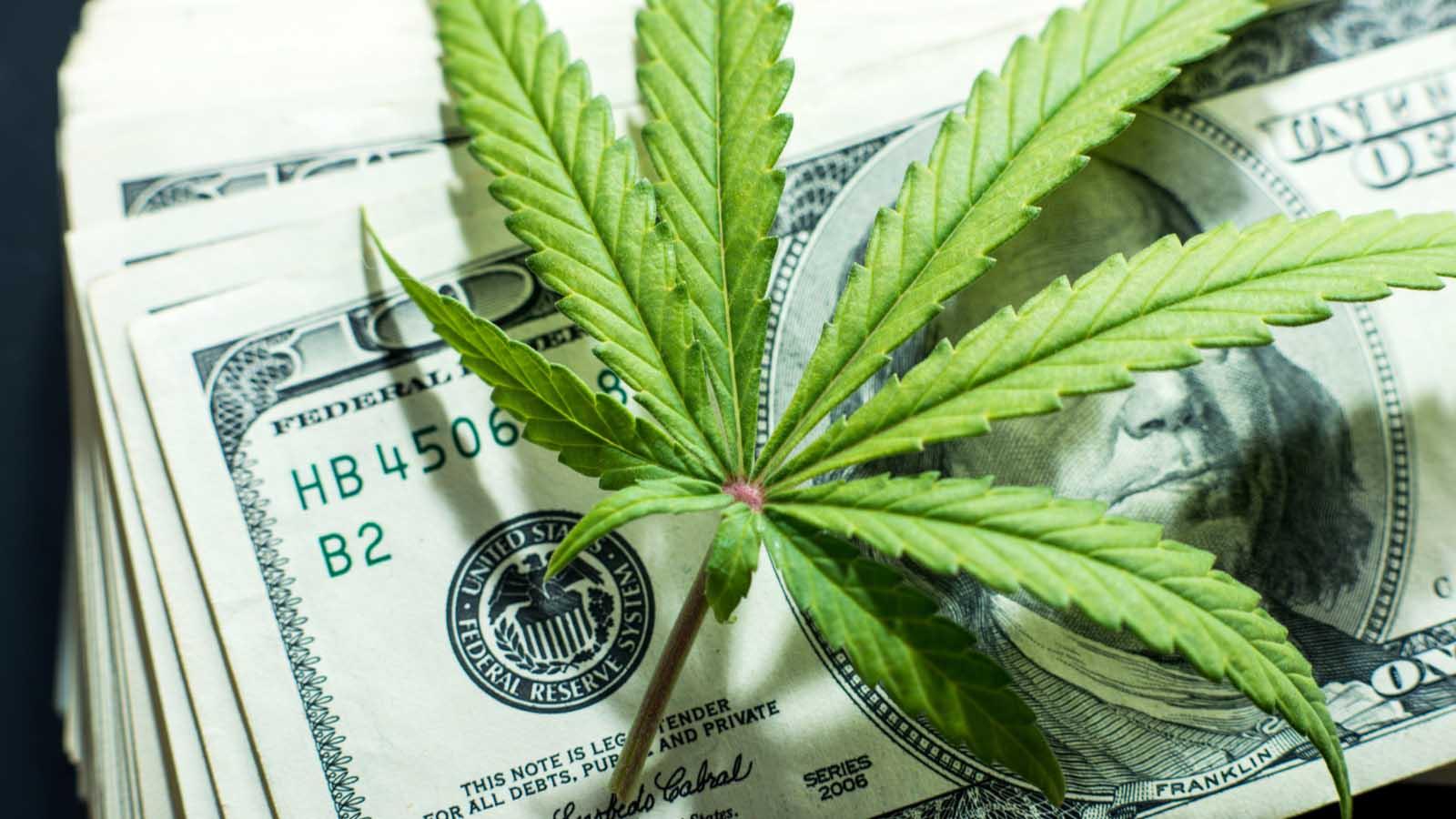 Деньги для растамана марихуана где купить марихуану чехия