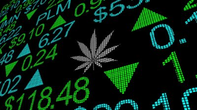 5 Hot Cannabis Stocks to Snap Up