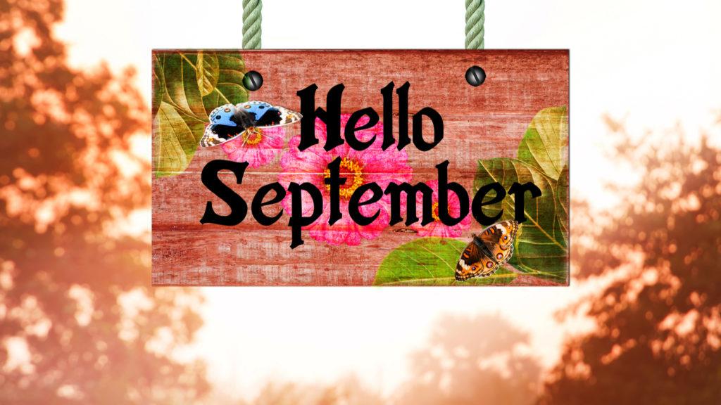 september hello social investorplace shutterstock source