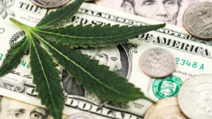 Cannabis leaf on dollar bill