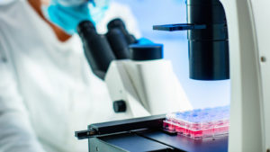 Cellect Biotechnology News: APOP Stock Rockets 76% on New Patent Approvals
