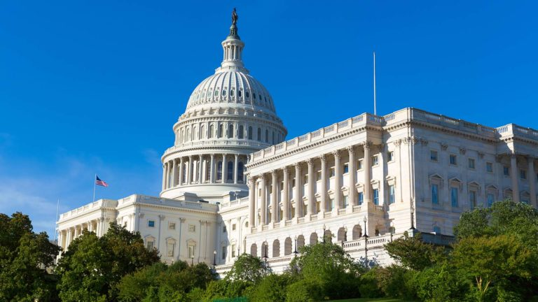 stocks to buy - 7 Stocks to Buy If You Want to Follow Our U.S. Senators