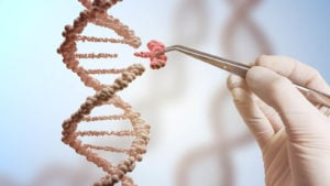 Image of a person altering a strand of DNA.
