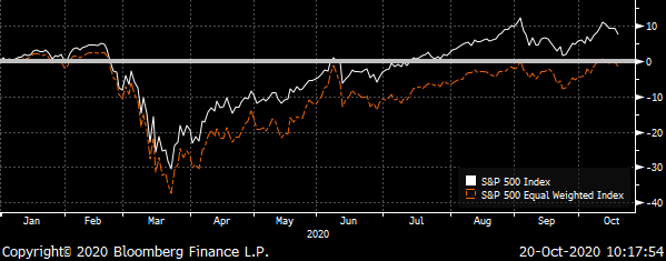 Chart showing the total returns for the S&P 500 & Unweighted S&P 500 Indexes during 2020.