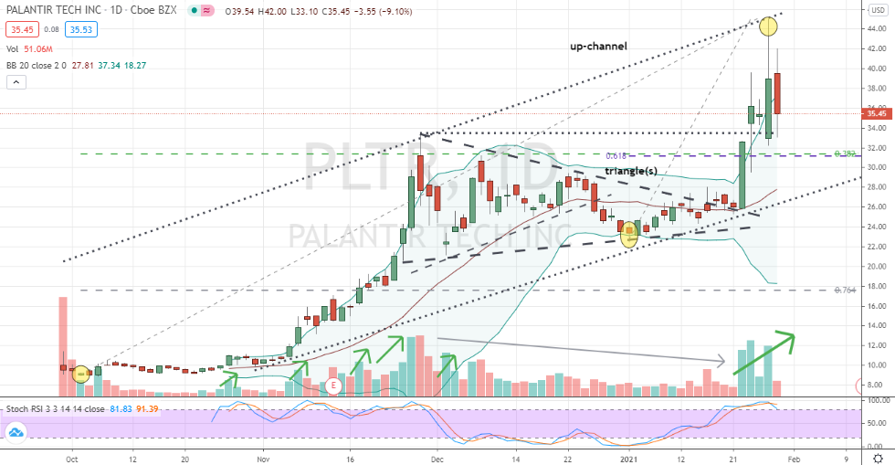 Palantir (PLTR) well-supported pullback to buy
