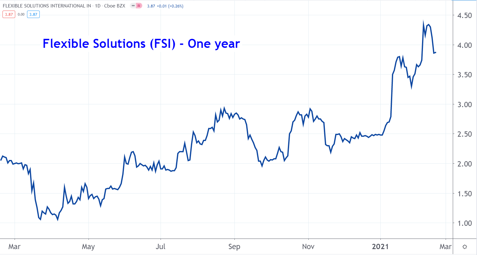 Line graph of Flexible Solutions stock price from March 2020 to March 2021, showing a steady uptrend