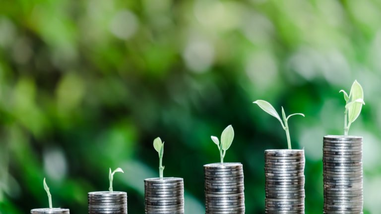 growth stocks - 4 Great Growth Stocks That Could Double Your Investment