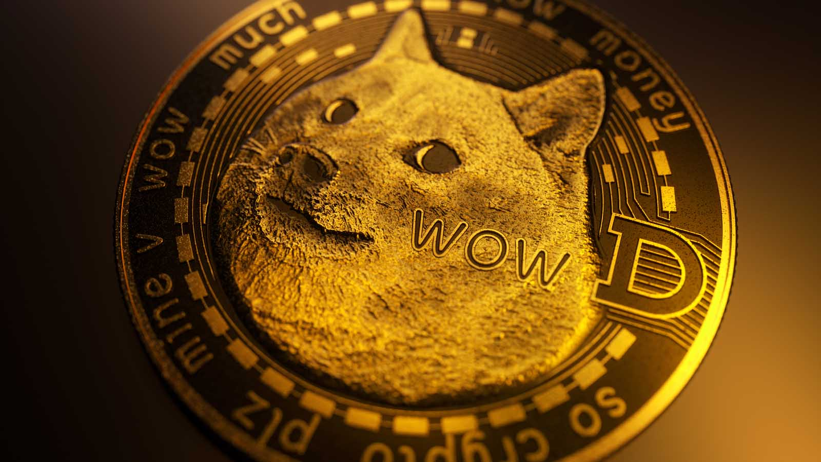 Inflation and Influencers: How Investors Can Send Dogecoin to $10