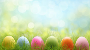 Colorful Easter eggs lined up in grass.