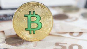 A concept coin for Bitcoin Cash (BCH).