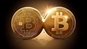 A concept coin for Bitcoin Gold (BTG) next to Bitcoin (BTC).