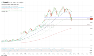 Top stock trades for SONO