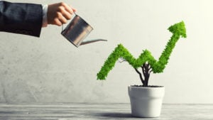A person waters a plant in the shape of a graph representing a growing stock price.