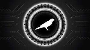A concept artwork for Kusama (KSM) crypto.