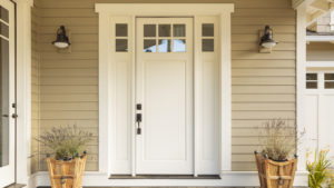 DOOR stock: a white front door of a house between two wall-mounted lights and two potted plants