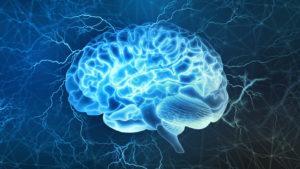 CGNSF stock: a stylized image of a transparent human brain