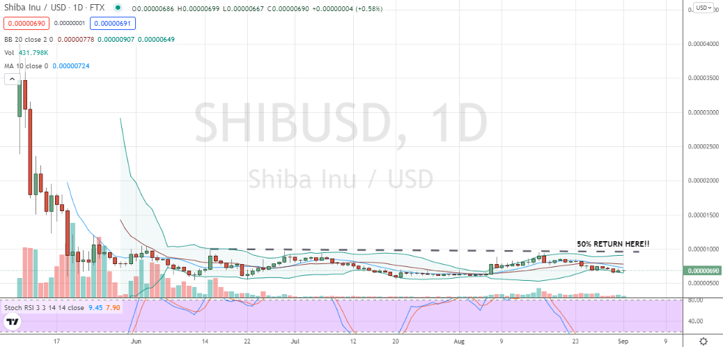 Shiba Inu (SHIB-USD) doggish price action, but hope springs eternal for meme traders scheming for fast returns