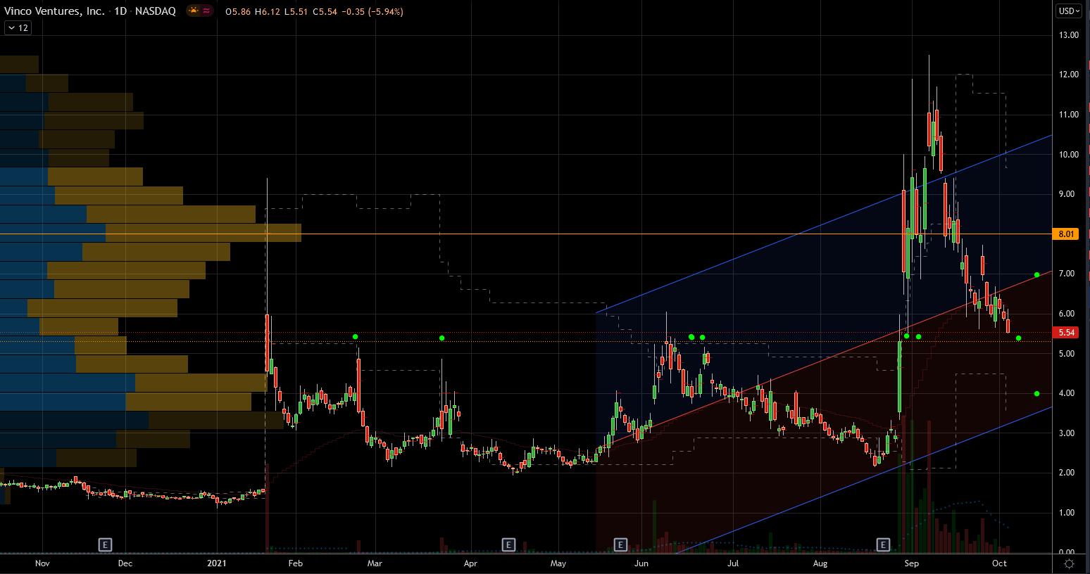 Vinco Ventures (BBIG) Stock Showing Extreme Volatility